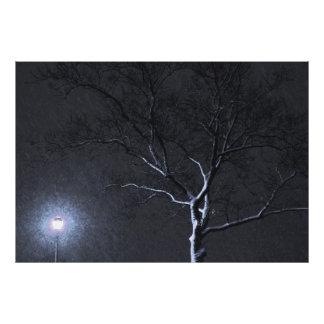 Black & White Landscape Winter Tree Photo