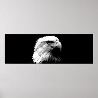 Black & White Leadership Eagle Eyes Door Poster