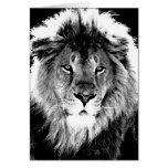 Black & White Lion Greeting Card