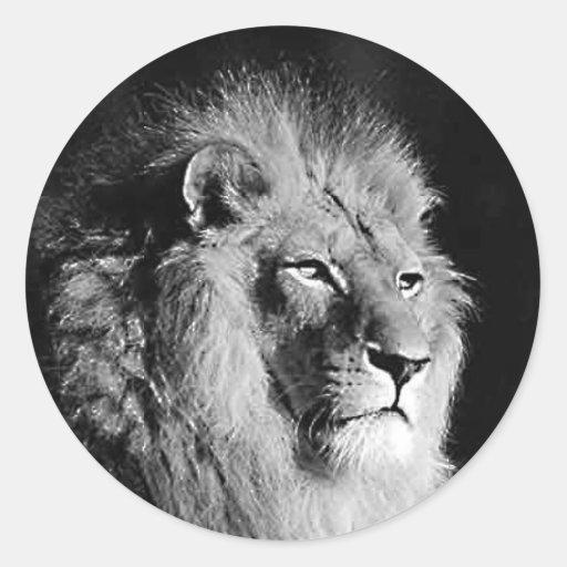 Black & White Lion Photo Classic Round Sticker