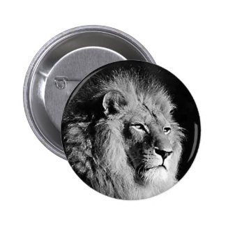 Black & White Lion Photo Pinback Button