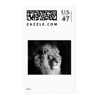 Black & White Lion Photo Postage