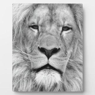 Black & White Lion Plaque
