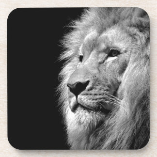 Black White Lion Portrait - Animal Photography Coaster