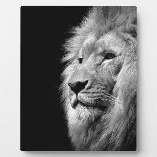 Black White Lion Portrait - Animal Photography Plaque