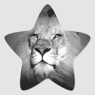 Black & White Lion Star Sticker