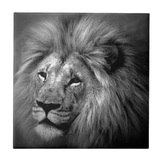 Black & White Lion Tile