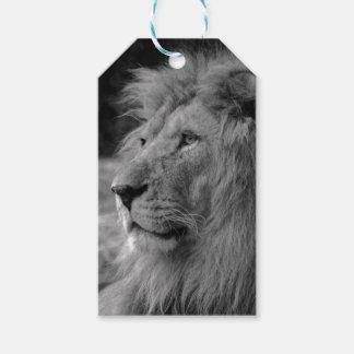 Black & White Lion - Wild Animal Gift Tags