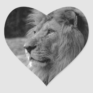 Black & White Lion - Wild Animal Heart Sticker