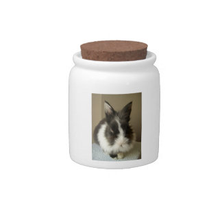 Black & White Long Haired Bunny Rabbit Candy Jar