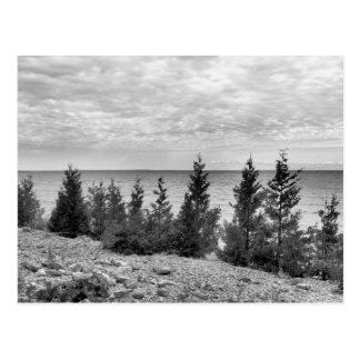 Black & White Mackinac Island, Michigan Shoreline Postcard