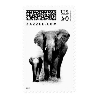 Black White Mom & Calf Elephant Postage Stamps