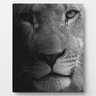 Black White Motivational Leadership Lion Portrait Plaque