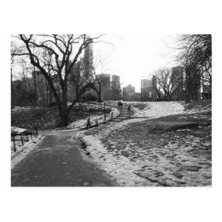 Black White NY Central Park nr 1 Postcard