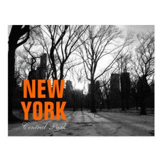 Black White NY Central Park nr 5 Postcard