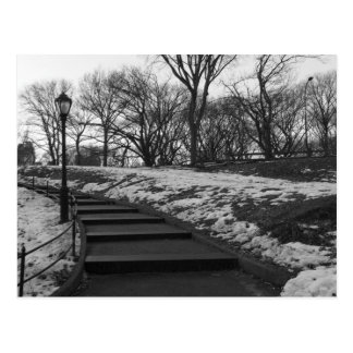 Black White NY Central Park Post Card