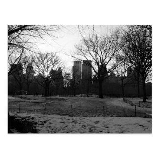 Black White NY Central Park Post Cards
