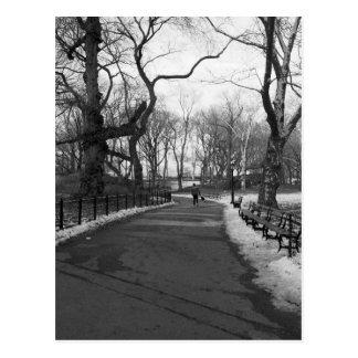 Black White NY Central Park Postcards