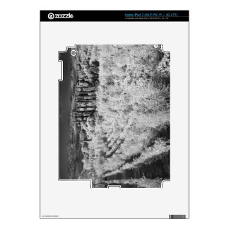 Black & White of vineyards, Montepulciano, Italy iPad 3 Decal