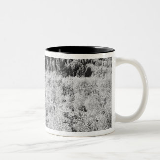 Black & White of vineyards, Montepulciano, Italy Coffee Mug