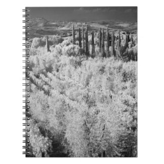 Black & White of vineyards, Montepulciano, Italy Notebook