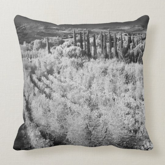 Black & White of vineyards, Montepulciano, Italy Throw Pillow