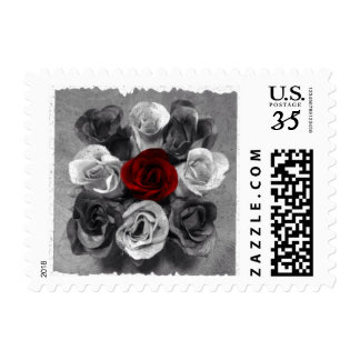 Black & White One Red Rose Postage Stamp