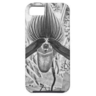 Black White Orchid flower art iPhone 5 Case