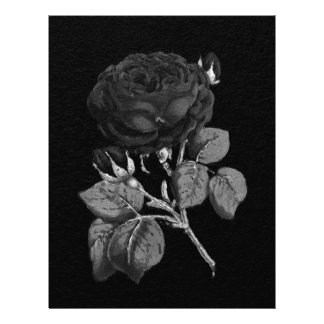 Black&White Painted Abstract Rose Letterhead