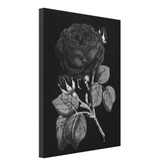 Black&White Painted Rose Canvas Print