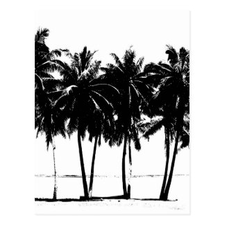 Black White Palm Trees Silhouette Postcard