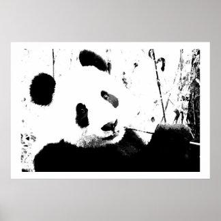 Black & White Panda Face Posters Prints