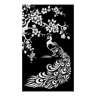 Black white peacock and cherry blossoms poster