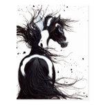 Black White Pinto Paint Horse by Bihrle Post Card