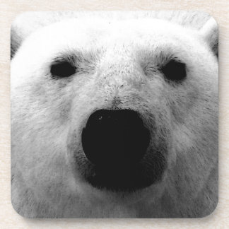 Black & White Polar Bear Coaster