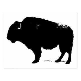 Black & White Pop Art Buffalo Bison Postcard