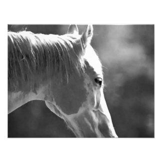 Black White Pop Art Horse Personalized Invites