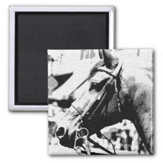 Black & White Pop Art Horse Magnet