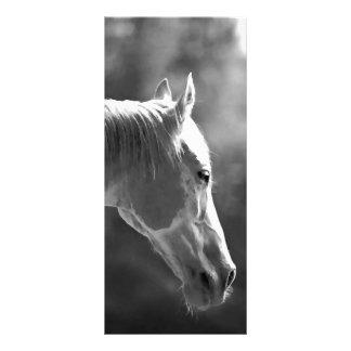 Black & White Pop Art Horse Rack Card