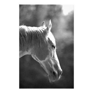 Black & White Pop Art Horse Stationery