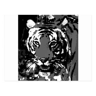 Black White Pop Art Tiger Postcard