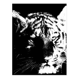 Black & White Pop Art Tiger Postcard