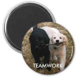 Black & white puppies magnet