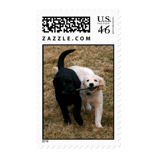 Black & white puppies postage stamps
