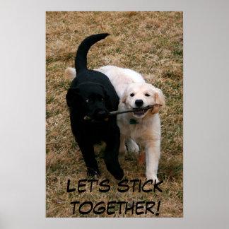 Black white puppies poster