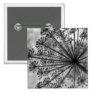 Black & White Queen Anne's Lace Button