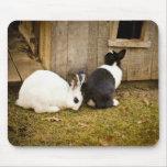 Black & White Rabbits Mouse Pad