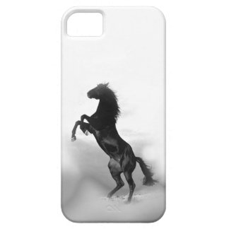 Black White Rearing Horse Silhouette iPhone SE/5/5s Case