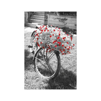 Black White Red Flowers Vintage Bicycle Summer Canvas Print