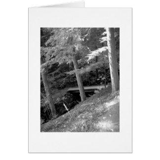 Black & White Root Glen Card